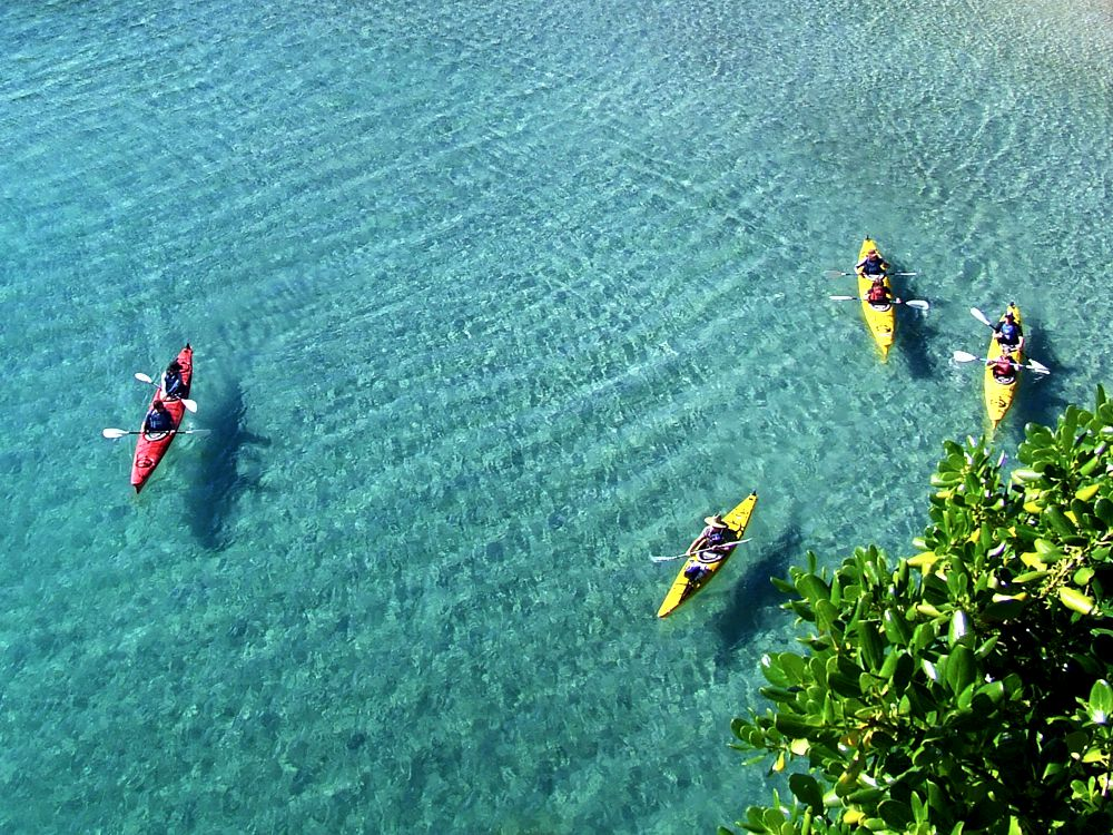 Full Day Tour – Cathedral Cove Kayak Tours